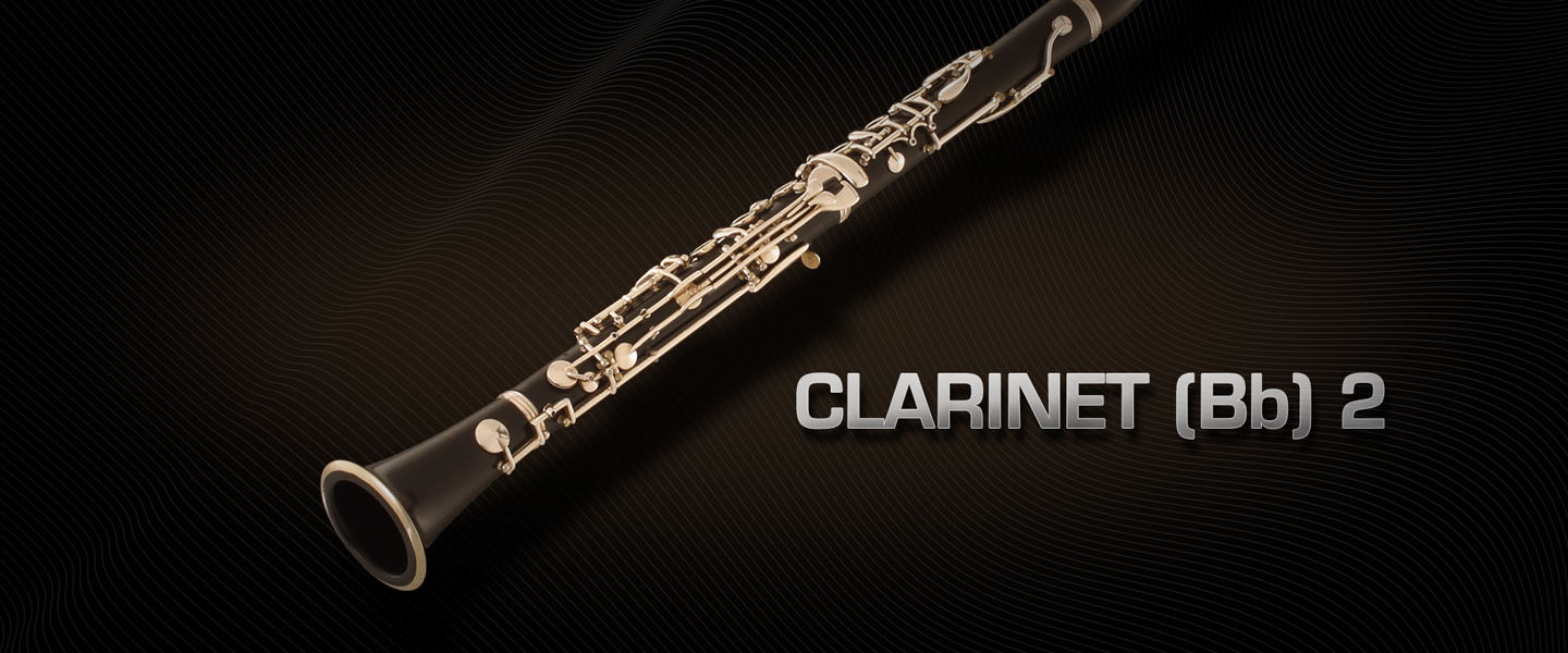 an overview of the clarinet Clarinet is a clinical middle ear analyzer, featured with all the tests needed for a deep  an overview of the tests available on each version basic 226hz.