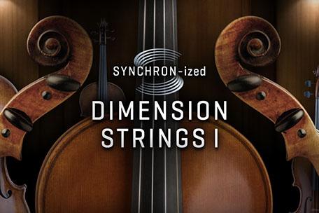 SYNCHRON-ized Dimension Strings I